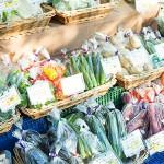 3月7日(土)は旬の野菜がならぶファーマーズマーケット「湘南メルカート」も開催予定。